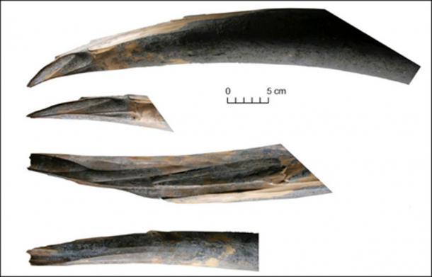 Las huellas de la interferencia humana en la punta del colmillo derecho del mamut Sopkarginsky (Zhenya). De archivo: Vladimir Pitulko