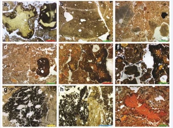 Estos son perfiles de sedimentos que muestran una galería de excrementos fósiles de Denisovan, que incluye hiena, lobo y otros no identificados. (Dr. Mike Morley, Universidad de Flinders)