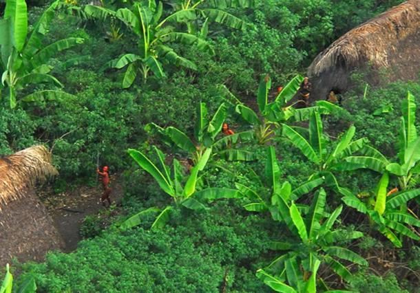 Tribu indígena no contactada en el Brasil defendiendo su territorio. (Arthur to / CC BY-SA 2.0)