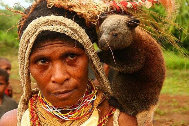Un estudio del ADN de los papúes de Nueva Guinea condujo al descubrimiento de que los denisovanos y los humanos modernos se aparearon. (Flickr subir bot / CC BY-SA 2.0)