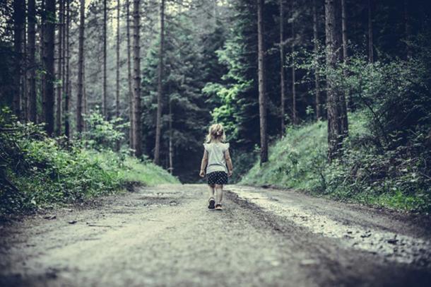 Una niña de Wicklow desapareció durante tres días (Stefan / Adobe Stock)