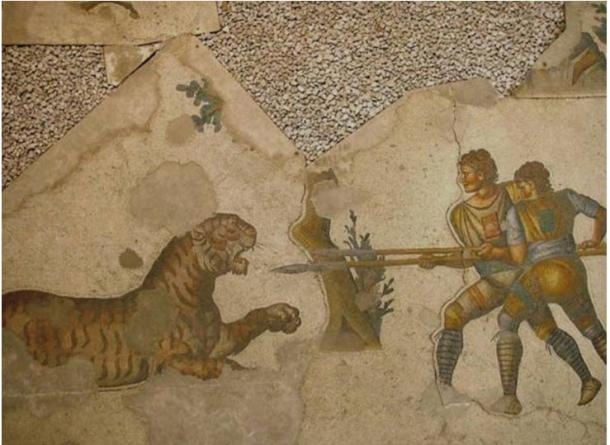 Dos Venatores (que realizaban sobre la arena una lucha de persecución, a la caza de un animal) luchando contra un tigre. Mosaico del suelo del Gran Palacio de Constantinopla (Estambul), siglo V.