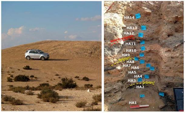 (Izquierda) Vista del montículo de basura M1 de Elusa (foto de G.B.-O.); (Derecha) Sección este de 1.3 m de profundidad en la Zanja A, montículo M1, con su secuencia de capas alternas de sedimento de color oscuro y claro. (Imagen: Guy Bar-Oz et al / PNAS)