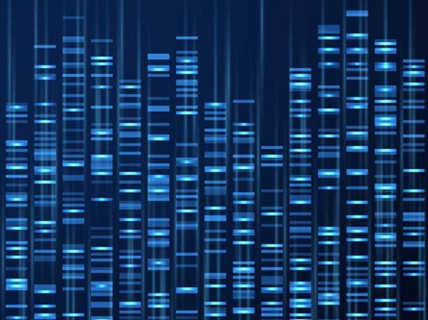 Visualización de datos genómicos. Secuencia del genoma del ADN, mapa genético médico. (MicroOne / Adobe)