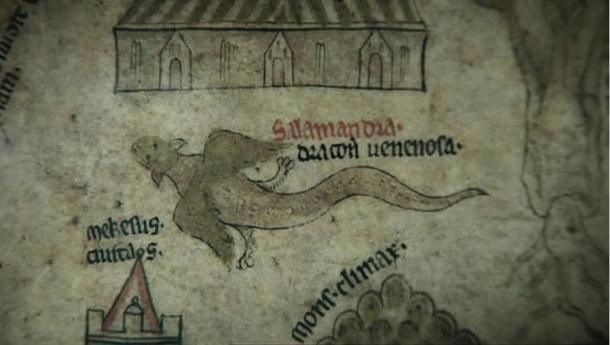 Salamandra con alas se ve como vuela sobre el Mapamundi de Hereford.