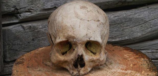 Portada - Se han descubierto en China cráneos humanos con evidencias de haber sido sometidos a una craneotomía. Fuente: DiKiYaqua via Fotolia