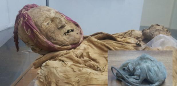Portada - la momia de Guano y el ratoncito hallado junto a ella. Fotografías cortesía de Chris Aguilar