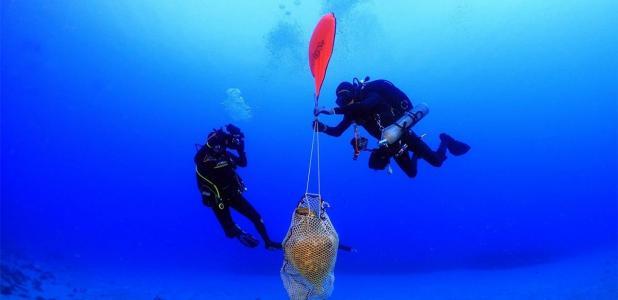 Arqueólogos levantando un ánfora de un antiguo naufragio romano frente a Kasos.