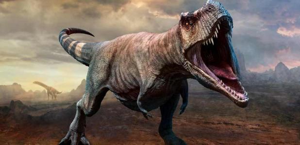 Tyrannosaurus rex, según el último estudio científico, cazado en manadas, al igual que los lobos