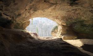 Portada - Cueva de Vindija (Croacia). Al examinar sus sedimentos mediante la nueva tecnología se ha conseguido hallar ADN Neandertal. (CC by SA 2.0)