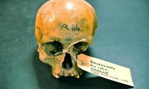 Portada-Cráneo de una mujer del Neolítico hallado en unas excavaciones realizadas en el año 1855 en Ballynahatty, Irlanda del Norte. Fotografía: Daniel Bradley