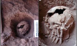 Portada-Fotografías del cráneo 26 en su lugar de enterramiento. (Fotografías: PLOS ONE)