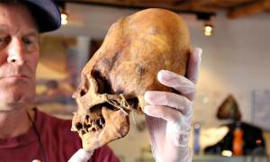 Portada - Uno de los cráneos deformados de Ica (Fotografía: Martin J. Clemens/La Gran Época)