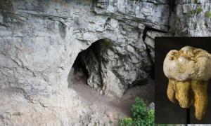 Portada-Principal: Cueva de Denisova, Rusia (public domain). Detalle: molar Denisovano descubierto en la cueva de Denisova, réplica del Museo de Ciencias Naturales de Bruselas, Bélgica. (Public Domain)