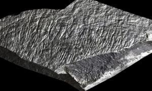 Portada-Sobre esta piedra hallada en la isla de Jersey hay grabadas líneas tanto rectas como curvas, y es uno de los tres ejemplos de arte prehistórico más antiguos conocidos de las islas británicas. (Sarah Duffy/Ice Age Island)
