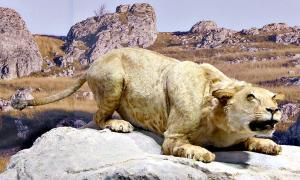 Portada - Reconstrucción de un león de las cavernas en la Cueva del Puente del Arco en Francia. (Public Domain)