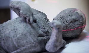 Portada-Molde de yeso que contiene los restos de un niño de cuatro años víctima de la erupción del Vesubio, en el momento de ser introducido en el aparato de Tomografía Computadorizada. Italia (Autoría: Photoshot)
