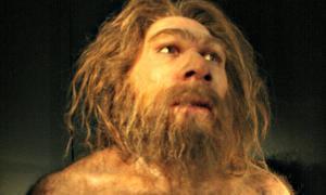 Portada-Reproducción de Homo neanderthalensis. Museo de la Evolución Humana (MEH) de Burgos, España. (Fotografía: Nachosan/CC BY-SA 3.0)