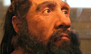 Portada-Detalle de un modelo de Homo neanderthalensis. Museo Nacional de Historia Natural de Washington. (Fotografía: Ryan Somma/Flickr)
