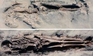 Portada-Abajo, el esqueleto intacto de un hombre en la postura supina y extendida típica de este cementerio; y arriba, el enterramiento de otro individuo, manipulado con un patrón habitual de alteración de los restos, en el que los ladrones han revuelto los huesos de la parte superior del torso y se han llevado la calavera. (Foto: Antiquity)