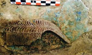 Portada-Peine de marfil hallado en la tumba de hace 3.500 años perteneciente a un guerrero y desenterrada en la región griega del Peloponeso. Ministerio de Cultura griego.