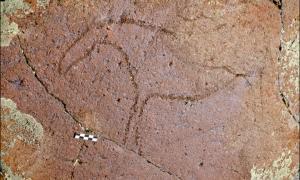 Portada-Petroglifos-Ukok-Siberia.jpg