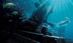 Portada-Ruins Lagoon-Bahamas-Peces pelagicos y de arrecifes profundos.jpg