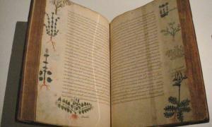 Portada-Tratado de cinco volúmenes sobre cuestiones médicas obra de Dioscórides y titulado De Materia Medica, Bizancio, siglo XV. (World Imaging/Wikimedia Commons).