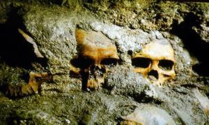 portada: Fotografía de algunos de los cráneos descubiertos y que corresponden al Tzompantli principal de Tenochtitlan. Foto: Jesús Villaseca/Jornada.Unam.Mx
