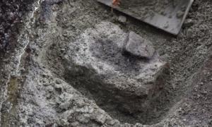 Portada-Una de las huellas de pisadas recién descubiertas en la Columbia Britanica (Fotografía cedida por Joanne McSporran).jpg