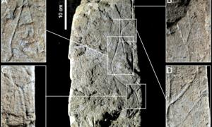 Portada-Detalles macrofotográficos del bloque de piedra caliza en el que se halla grabada la imagen de la Dama de Arlanpe. Figura 5 del estudio publicado en la revista Oxford Journal of Archaeology. (Fotografía: Oxford Journal Of Archaeology)