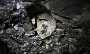 Portada-Algunos de los restos óseos descubiertos en el yacimiento. (Fotografía: Rafa Gutiérrez/El País)