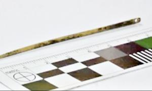 Portada - En la fotografía se puede observar el preciso detalle de la aguja, muy similar a las que usamos en la actualidad. (Fotografía: Siberian Times)