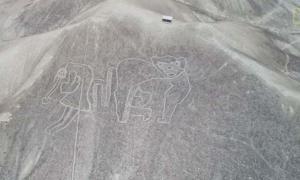 Portada - Representación de un hombre volador con un mono atado a su espalda. Los geoglifos anteriores a las líneas de Nazca muestran muchas más figuras humanas. Fuente: National Geographic