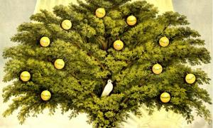 Portada - Árbol de la Vida (Dominio público)