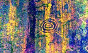 Portada - Fotografía del principal motivo del sector Inkaterra, consistente en círculos concéntricos con líneas salientes a modo de apéndice. (Fotografía: National Geographic)