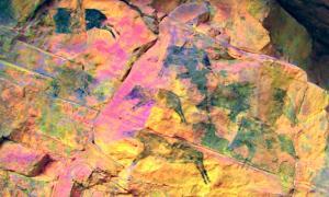 Portada - Los jabalíes protagonistas de algunas de las pinturas rupestres descubiertas recientemente en la provincia de Castellón, España. (Fotografía: alicantepress.com)