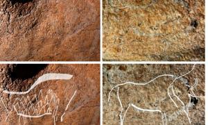 Portada - Figuras de bisontes en algunos de los grabados rupestres descubiertos recientemente en la cueva de Atxurra.
