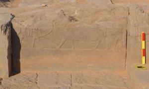 Portada - Muro decorado de la calzada recientemente descubierta en el transcurso de unas excavaciones en la necrópolis de Qubbet El-Hawa, Asuán, Egipto.(Ministerio de Antigüedades de Egipto)
