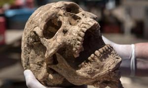 Portada - Restos humanos enterrados hace casi 3.000 años en el sur de Israel podrían ayudar a los investigadores a resolver definitivamente el misterio de los orígenes de los filisteos. Fotografía: Tsafrir Abayov, para la Expedición Leon Levy en Ascalón.