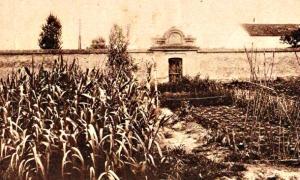 Portada - Panorámica del cementerio de los ajusticiados. Fotografía de 1920. (Foto: Historia Enigmática)