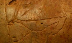 Portada - Talla de un ciervo extinto en la cueva cretense de Asphendou. Fuente: Sarah Murray