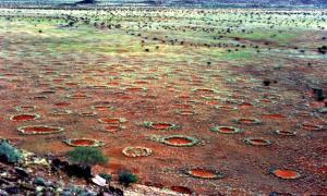 Portada - Vista panorámica de los llamados círculos de hadas del desierto de Namibia. (Stephan Getzin/GNU Free)