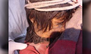 Portada - momia de un niño inca descubierta en el volcán Llullaillaco, situado en la provincia de Salta, Argentina. (CC BY 2.0)