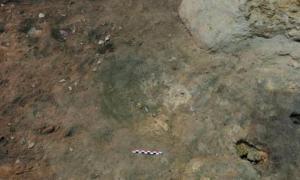 Portada-La concavidad descubierta en la cueva catalana del Abric Romaní – Palmira Saladié/IPHES
