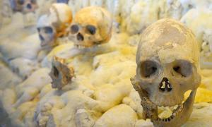 Portada - Algunos de los cráneos encontrados en la Cueva de los Antepasados de Puyil, Tacotalpa, Tabasco, México. Fuente: INAH