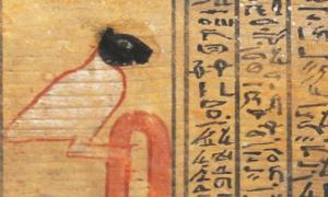 Portada-El demonio Ikenty aparece representado como un gran pájaro con la cabeza de un felino de color negro en este ataúd del Imperio Medio. El mismo demonio aparece con idéntico aspecto en un pergamino mucho más antiguo. Fotografía: Wael Sherbiny