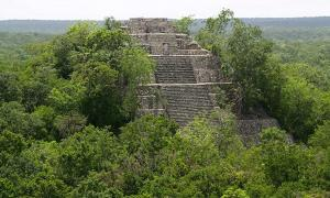 Portada - Antiguo templo en la selva de México, Calakmul (CC by SA 3.0)