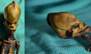Portada - Feto momificado descubierto en el desierto de Atacama chileno. Fuente: E. Smith