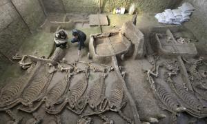 Portada-esqueletos-caballos-Luoyang.jpg